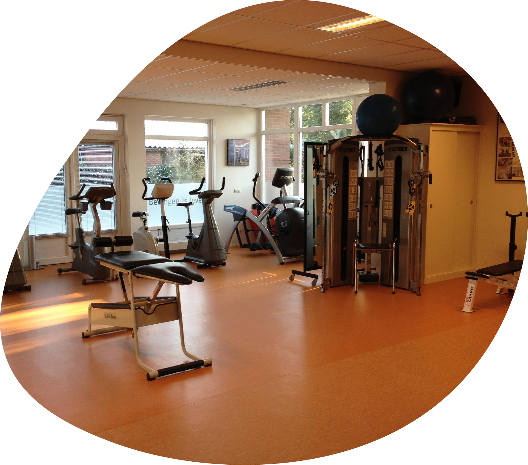 Oefenzaal - Van Panhuis Fysiotherapie Aalten